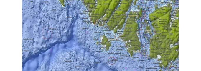 C-Map Charts