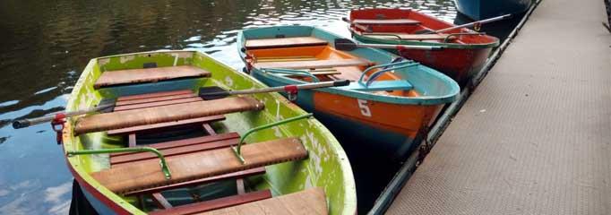 Oars & Rowlocks