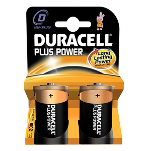 D Batteries - 2 Pack (LR20/MN1300)