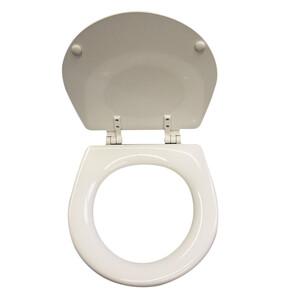 Seat + Lid + Hinges for  Regular Toilet (Pre 2018)