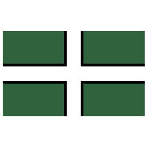 Courtesy Flag Devon