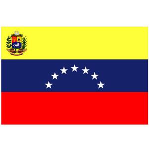 Courtesy Flag Venezuela