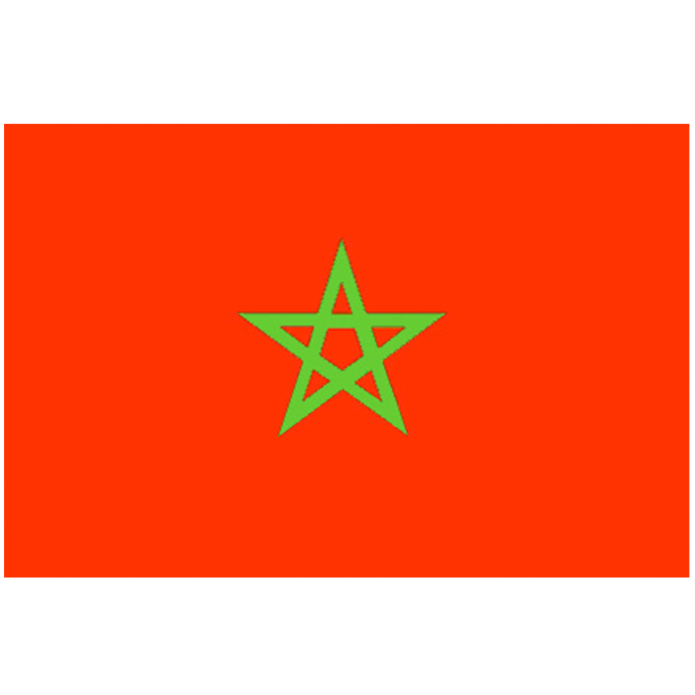 Courtesy Flag Morocco