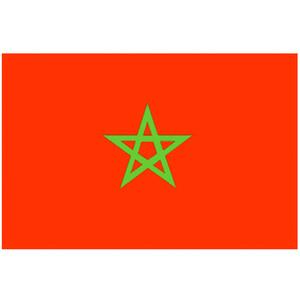Courtesy Flag Morocco