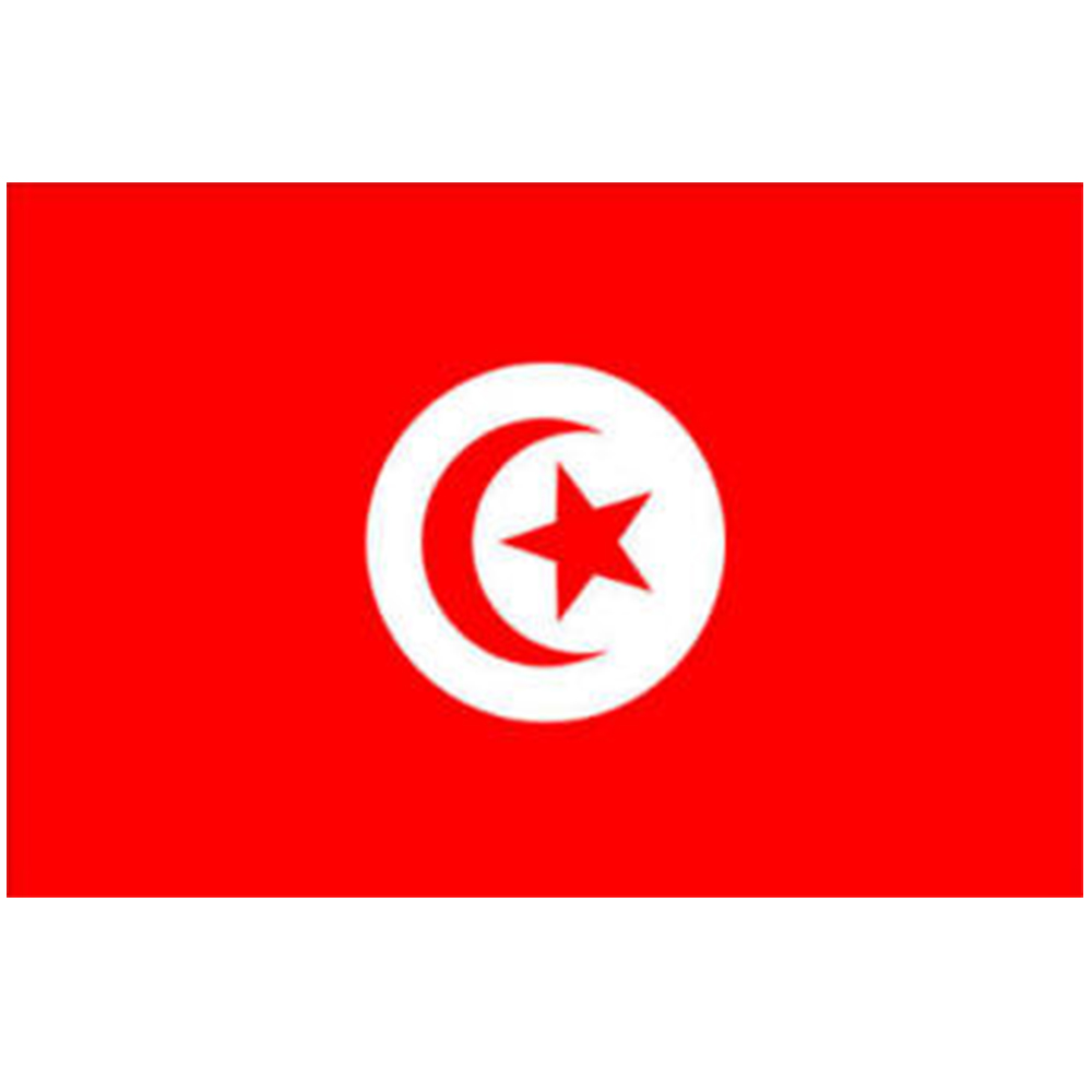 Courtesy Flag Tunisia