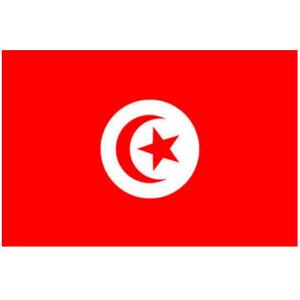 Courtesy Flag Tunisia