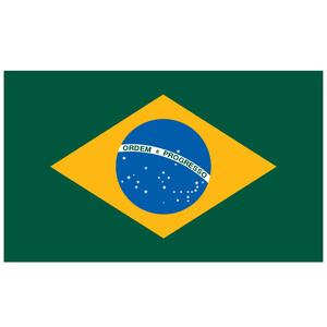 Courtesy Flag Brazil