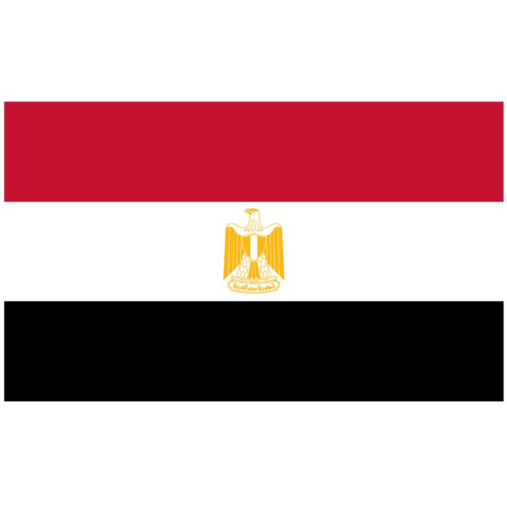 Courtesy Flag Egypt