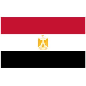 Courtesy Flag Egypt