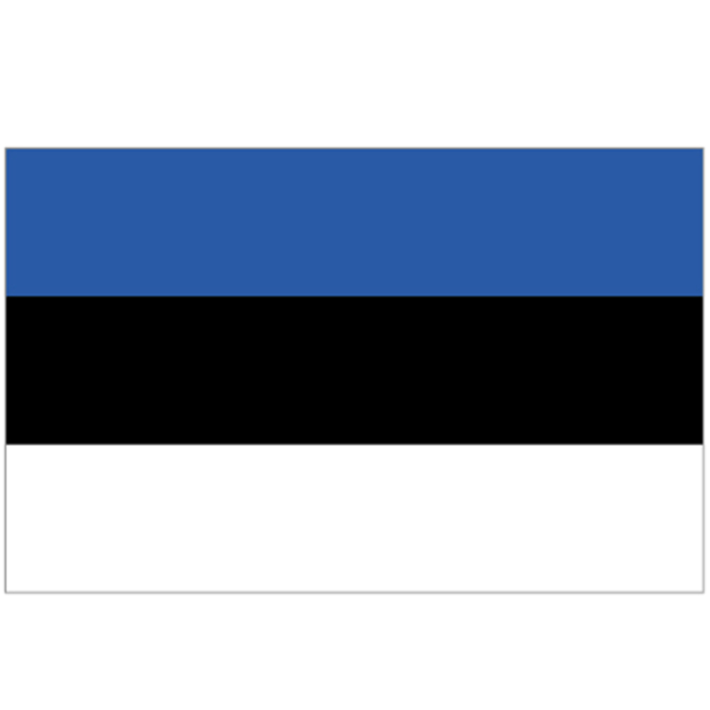 Courtesy Flag Estonia