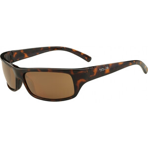 Fierce sunglasses - Shiny Tortoise  - Polarised A14 Ol