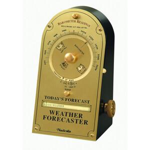 Desktop Weather Forecaster