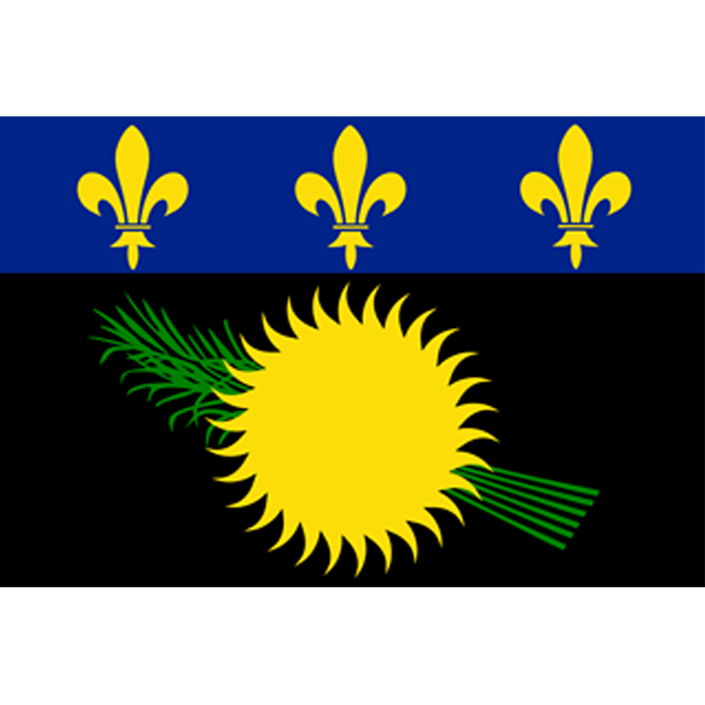 Courtesy Flag Guadeloupe