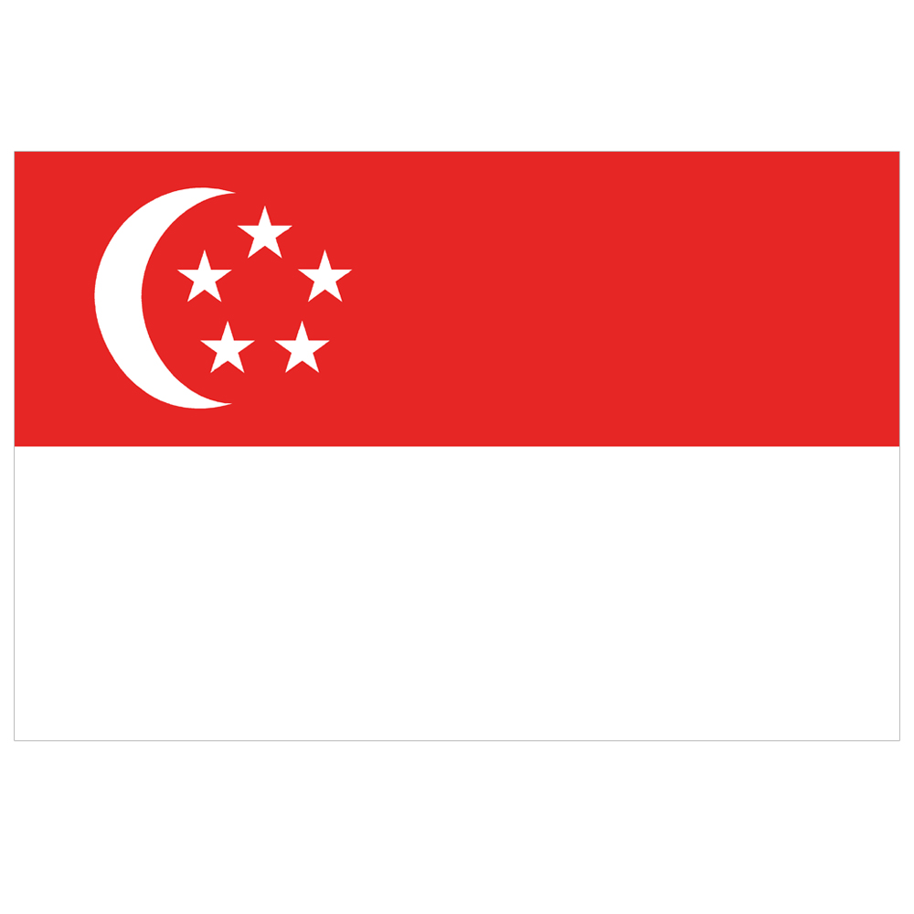 Courtesy Flag Singapore