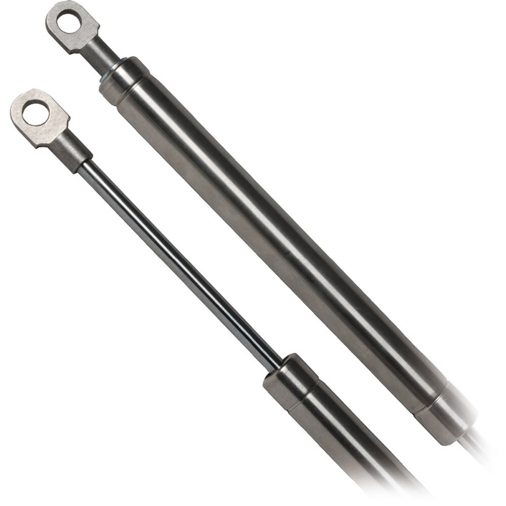 Stainless Steel Gas Spring Eye-Eye