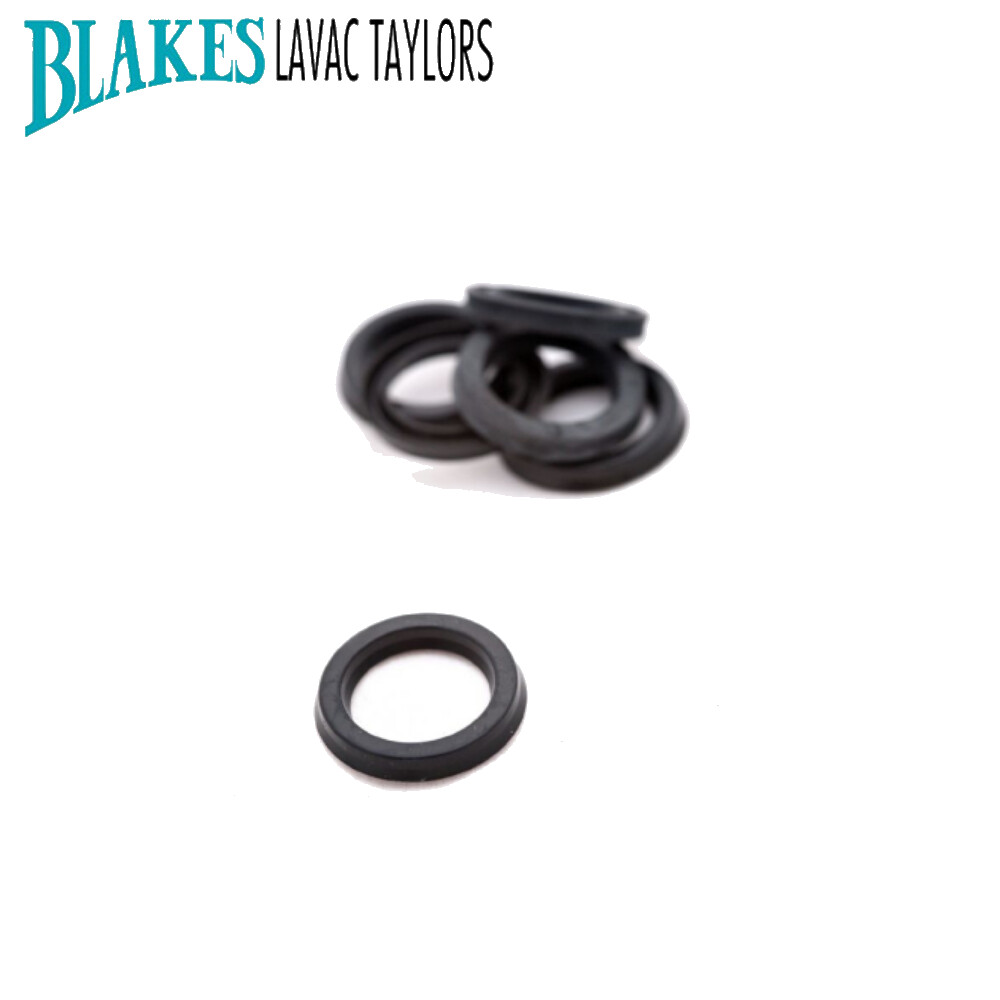 Blakes Lip Seal 16mm for Victory