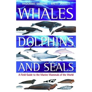 Whales Dolphins & Seals